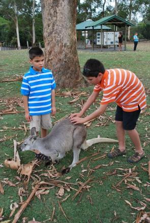 11-28-09 Nathan pets kangaroo