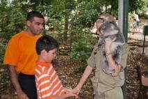 11-28-09 Neerav & Nathan placing koala