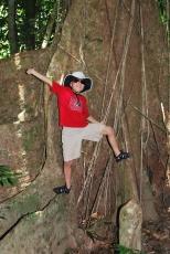 12-1-09 Aidan tree vines
