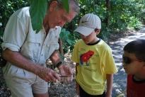 12-1-09 Guide Pete cuts open fig