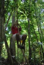 12-1-09 Neerav climbs vine