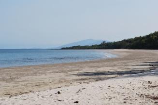 12-1-09 Rainforest beach