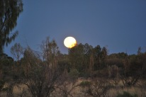12-2-09 Moon in Southern sky