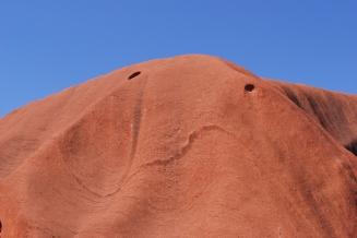 12-2-09 Uluru octopus