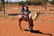 12-3-09 Boys camel WS