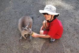 12-4-09 Aidan feeds kangaroo