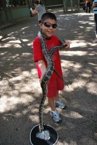 12-4-09 Aidan python