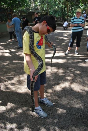 12-4-09 Nathan python