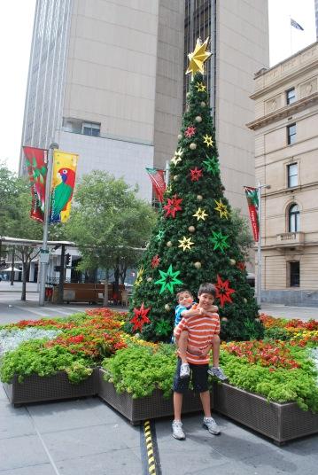 12-5-09 Boys Christmas tree
