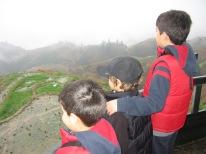 3-30 Boys view terraced patties rear
