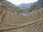 3-30 Terraced rice paddies