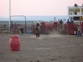 7-19 Charging bull