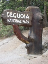 7-26 Sequoia NP sign