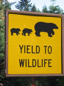 7-26 Yield to Wildlife sign CU