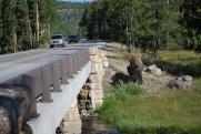 8-11-10 Bison roadside