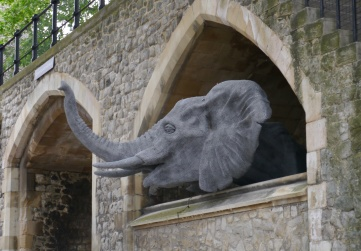 The Tower of London once housed wild animals.