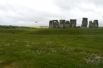 Stonehenge is surrounded by the beautiful English countryside. That's fields of goldenrod in the background.