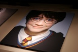 Inside the lobby, giant portraits all the main cast members hang on the wall. Here we see the young Harry Potter.