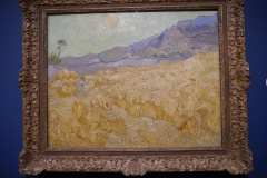 Wheat field with Reaper.
