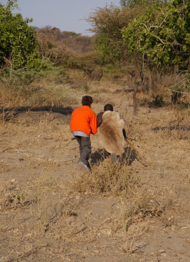Bushman coaches Aidan on stalking prey.