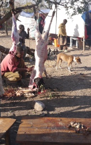 The reason for us going vegetarian in Africa.  Yep, that's a freshly slaughtered goat.