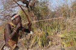 Bushman readies his shot.