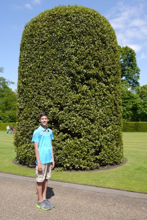"""Nathan calls these giant """"gumdrop"""" trees outside Kensington Palace. No sighting of William and Kate."""