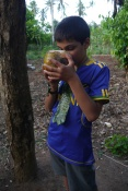 Aidan must have been thirsty! He nearly drank this entire coconut.