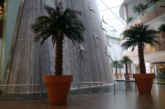 Every mall should have two 3-story waterfalls.