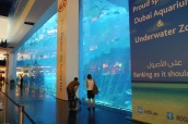 Why pay to go into the aquarium when you can see so much from the mall?