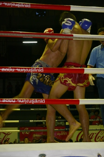 Muay Thai is similar to kickboxing.