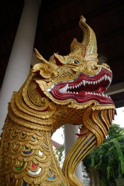Dragon outside Wat Chedi Luang
