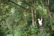 Neerav uses the bamboo hand brake.