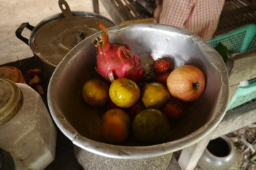 We couldn't bear to eat all the fruit provided for our lunch. Instead we gave it to the family.