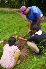 Neerav plants his mango tree for the family.