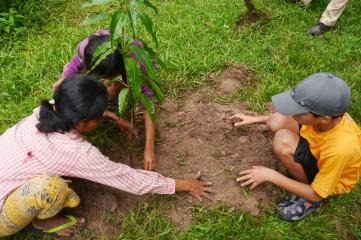 Aidan plants his mango tree for the family.