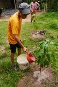 Aidan waters his tree.