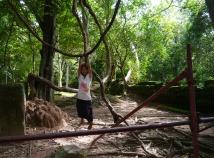 Cambodian girl swinging on vines