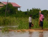 Kids checking their net for fish