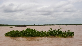 Tonle Sap Lake is 6200 square miles during the rainy season. It's only 1860 square miles during the dry season