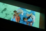 Aidan and Nathan in the pedal boat, as seen through the glass floor