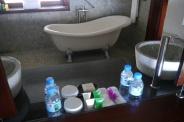 Rain shower and claw-foot tub in bathroom