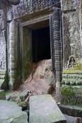 This doorway is being overtaken by termites. What looks like dirt is a termite mound.