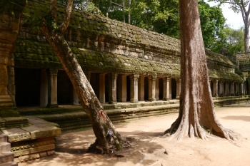 Recently restored area of Ta Prohm