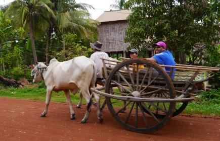 Aidan and Neerav riding Cambodian style
