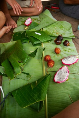 Our lunch consisted of vegetarian sandwiches wrapped in palm leaves and fresh fruit. A large banana leaf served as a tablecloth.